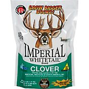 Whitetail Institute Imperial Clover